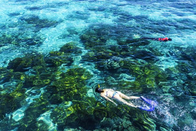 PVOSC-queensland-great-barrier-reef-snorkelling